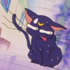 Dismayed Kitty-cat