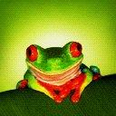 Froggy jpg
