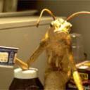 MiB Alien