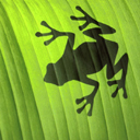 exotic animal avatar 0355